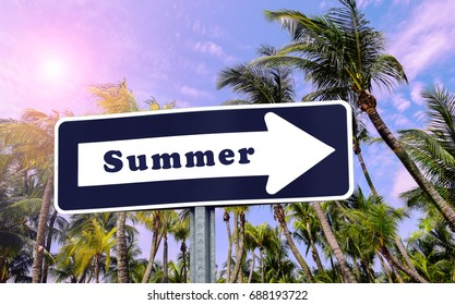 """Summer Sign. Blue and white arrow with word  """"SUMMER"""". Tropical palm trees in the background. Travel concept."""