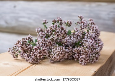 Summer smell with natural fresh oregano blossom bouquet on wooden bench with log house wall on background