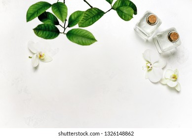 Summer spa background with blank space for a text, overhead view on spa body lotion in glass bottles decorated with white orchids