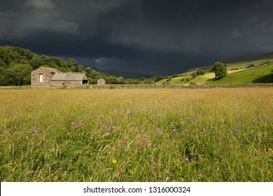 Summer storm, Swaledale, North Yorkshire. Brooding rain storm clouds over the Dales with flower meadows, green fields and an  old barn