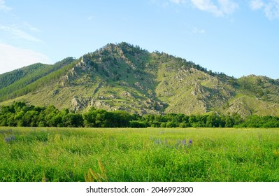 Summer sunny day and beautiful landscape in the Barguzin valley