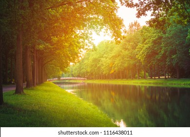 summer sunny river in the park