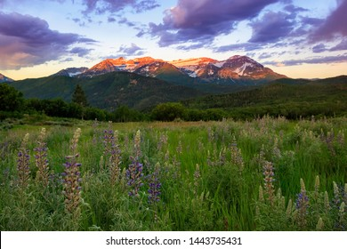 Summer sunrise in the Wasatch Mountains, Utah, USA.