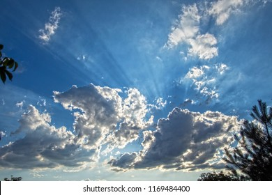 Summer sunset clouds - Shutterstock ID 1169484400