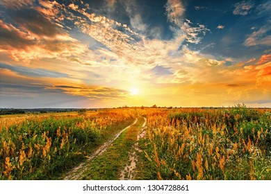 Summer sunset landscape with a dirt road through a field.