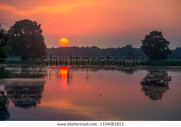 summer sunset over the lake