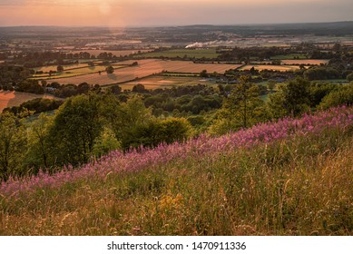 Summer sunset in the Vale of Aylesbury, Buckinghamshire