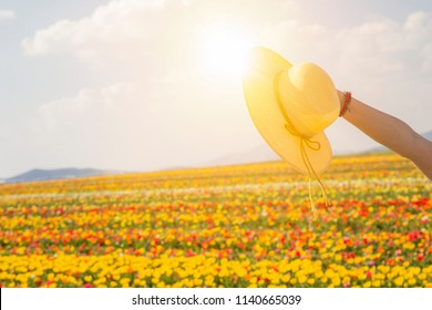 summer sunshine woman hand holding hat. Woman is holding the hat on beautiful blue sky and flower garden background. Life style woman concept in nature