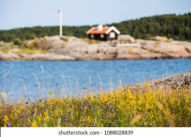 Summer in Sweden,  wild flowers and a summer home on the Swedish West Coast