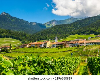 Summer Switzerland valley landscape with vineyards at foreground near Aigle