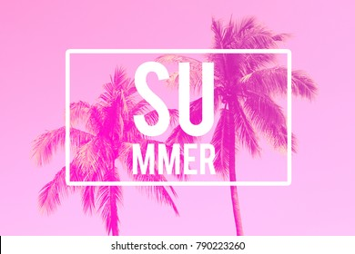 Summer Text, Palm Trees Background