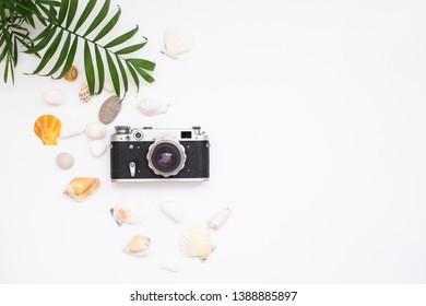 Summer time concept with sea shells, retro photo camera and green leaves  on a white background with space for text. Vacation flat lay. Close up top view