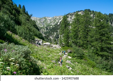 Summer Trekking in La Thuile Mountains - Aosta Valley