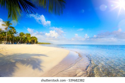 Summer tropical Beach; Peaceful vacation background.