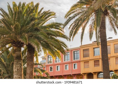 summer vacation in colorful city , Nice France