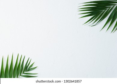 summer vacation, paradise, travel. ocean shore, tropical beach, sea coast. palm leaves on white background. minimal summertime concept. creative layout, banner or poster template with copy space