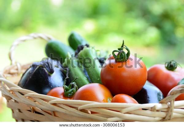 summer vegetables harvested in a basket