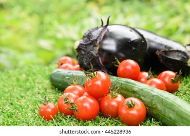 summer vegetables on the lawn
