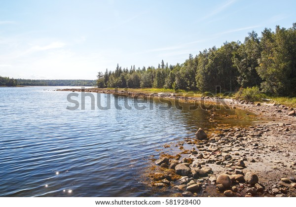 Summer view of the coast of the White Sea to the Solovetsky archipelago