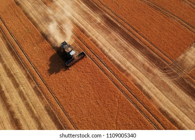 Summer view of combine harvester machine, in the romanian fields. Aerial view of harvesters
