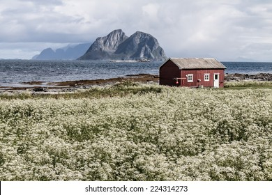Summer view to Vaeroy island, Lofoten, Norway