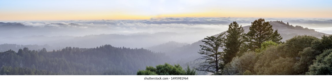 Summer Views of Santa Cruz Mountains, Mindego Hill and the Pacific Ocean Covered with Fog at Sunset. Russian Ridge Open Space Preserve, San Mateo County, California, USA.