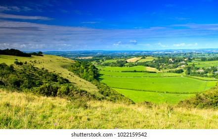 A summer walk in August around Melbury Hill in Dorset South West England