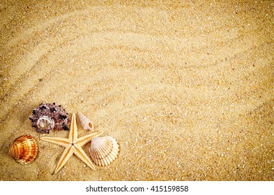 Summer wallpaper. Sea shells on sand, beach background.