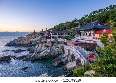 Summer at Yonggungsa Temple View in Busan South Korea
