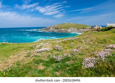 Summers day overlooking Little Fistral Beach Newquay Cornwall England UK Europe