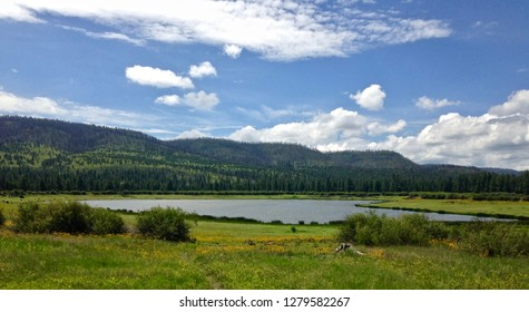 Summertime at Bunch Reservoir in the White Mountains of Apache Sitgreaves National Forest, Greer Arizona