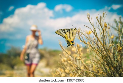Summertime, butterfly and a girl