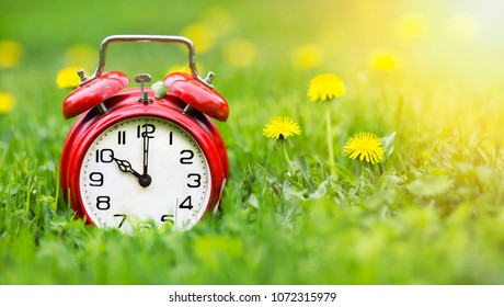 Summertime concept - web banner of alarm clock and dandelion flowers in the grass