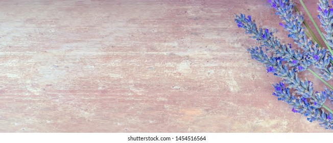 Summertime - lavender flowers. Bunch of lavender flowers on ocher red rustic background.