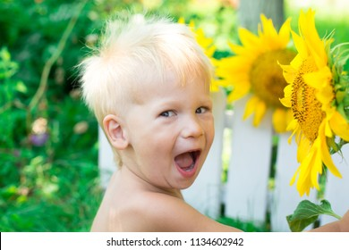 Summertime. A white-haired boy is sniffing a sunflower