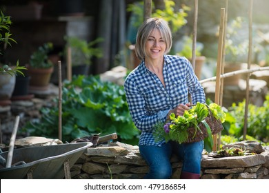 Summertime, a woman, smiling, forty years old, sitting in her garden on a stone wall. she's holding a basket in one 's knees, in which is vegetables and flowers, there is a wheelbarrow near her.