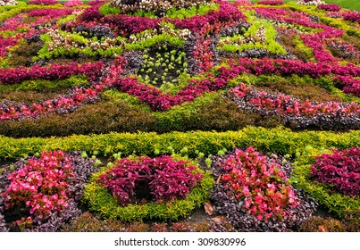 Summery flowerbed in park of Kislovodsk