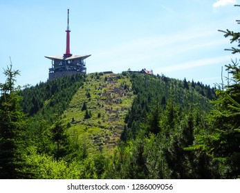 summit of Lysa Hora during summer sunny day in Moravian Silesian Beskids (Beskydy) mountains close to Frydlant nad Ostravici town in eastern Czech Republic, Central Europe