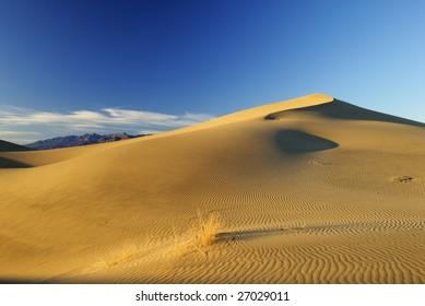 Summit of a sand dune in Mojave Desert, California