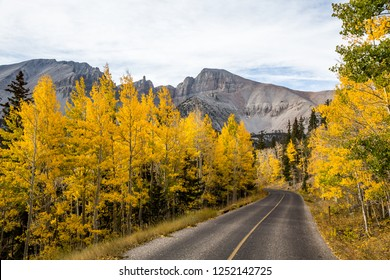 The summit of Wheeler Peak viewed over bright yellow aspen trees in autumn. A narrow paved road with a yellow line winds through the trees toward the peak.