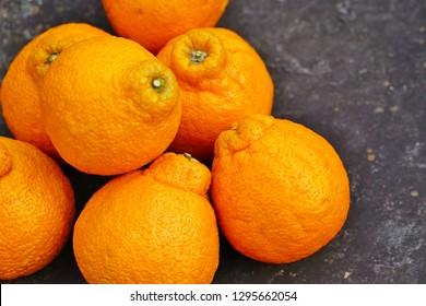 Sumo citrus giant mandarin orange fruit