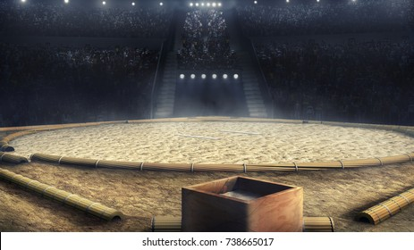 sumo professional grande arena in lights 3d rendering