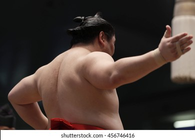 Sumo (traditional sport of japan)