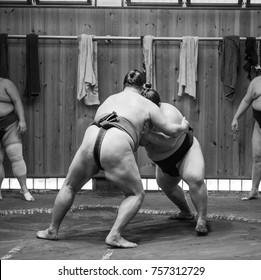 sumo wrestlers training for sumo fights in sumo stables preparing for sumo tournament held in tokyo japan