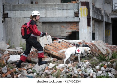 SUMY REGION, UKRAINE - August 20, 2015: Medic with a dog looking for victims under the rubble during exercises in the educational center of the State Emergency Service in Sumy region, Ukraine.