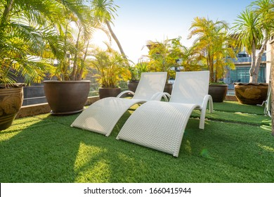 sun bed with green garden