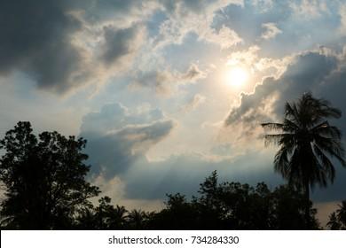 sun behind dark storm cloud with silhouette tree