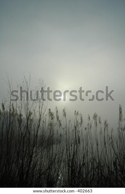 Sun behind fog