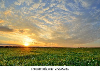 sun and bright green field under a colorful sunset sky