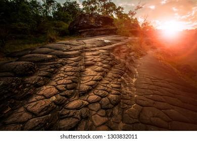 sun crack geology rock in phu hin rongkla national park phitsanuloke thailand